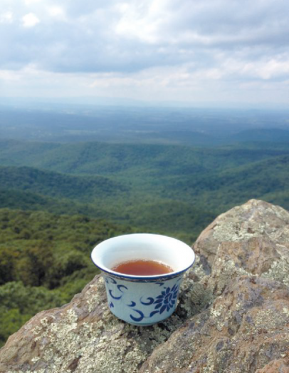 tea on mountain